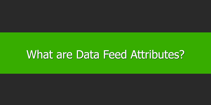 What are Data Feed Attributes