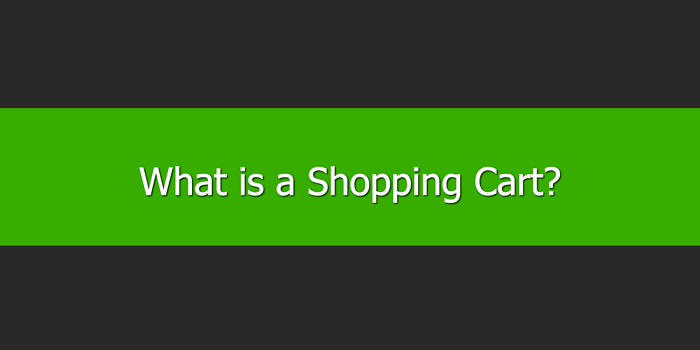 What is a Shopping Cart